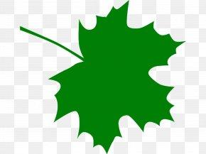 Maple Leaf Cliparts - Canada Sugar Maple Maple Leaf Clip Art PNG
