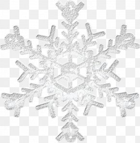 Silver Snowflake - Silver Snowflake Icon PNG