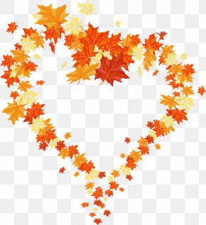 Autumn Leaves Heart - Autumn Leaf Color Heart PNG