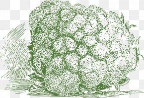 Cauliflower - Cauliflower Broccoli Slaw Veggie Burger Cabbage PNG
