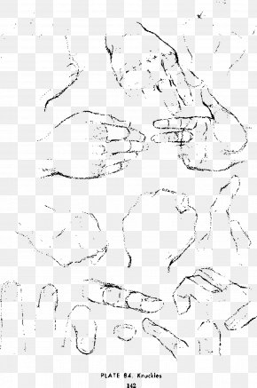 Hand Sketches - Drawing The Head And Hands Sketch PNG