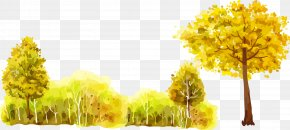 Tree-painting Cartoon Forest Trees - Tree Forest Oil Painting PNG