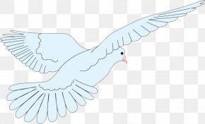 Eagle Flying - Beak Paper Bird Goose Duck PNG