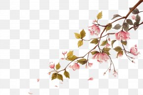 Falling Cherry Blossoms Float Picture Material - Cherry Blossom Watercolor Painting Ci PNG