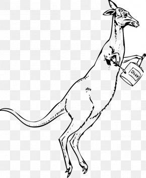 Cartoon Pictures Of Kangaroos - Drawing Cartoon Photography Clip Art PNG