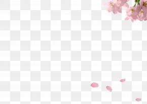 Petals Falling - Petal Angle Pink Pattern PNG