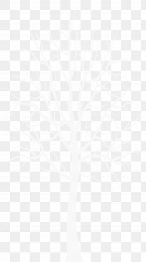 White Winter Tree Transparent Clip Art - Black And White Angle Point Pattern PNG