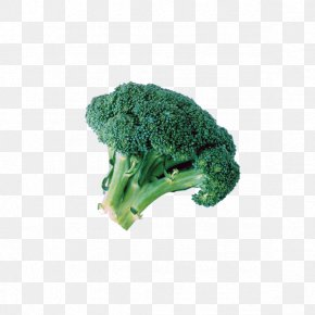 Cauliflower - Broccoli Extract Cauliflower Cabbage Vegetable PNG