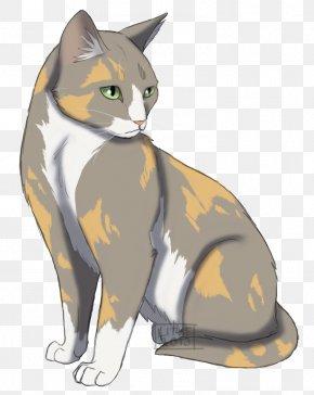 Kitten - Kitten Whiskers Domestic Short-haired Cat Manx Cat Warriors PNG