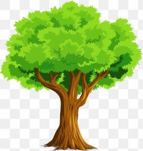 Tree Clip Art - Tree Euclidean Vector Clip Art PNG