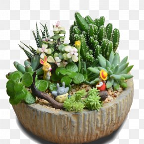Circular Stone Pot - Flowerpot Bonsai Vase PNG