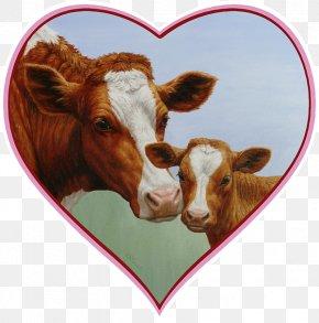 Calf - Holstein Friesian Cattle Highland Cattle Calf Nguni Cattle Jersey Cattle PNG