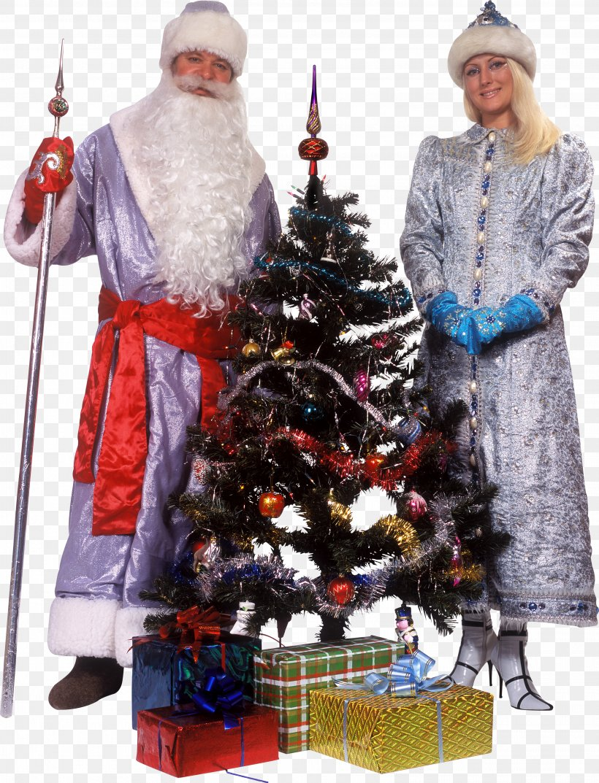 Christmas Tree Ded Moroz Snegurochka Santa Claus Christmas Ornament, PNG, 3137x4106px, Christmas Tree, Christmas, Christmas Day, Christmas Decoration, Christmas Ornament Download Free
