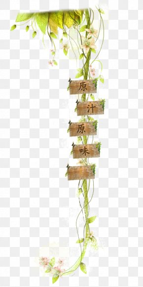 Text Branches Wood - Text Download Computer File PNG