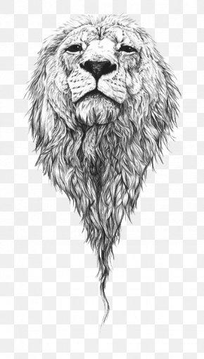 Lion - Lion Drawing Art Sketch PNG