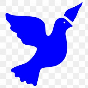 Dove Images Pictures - Columbidae Peace Symbols Clip Art PNG