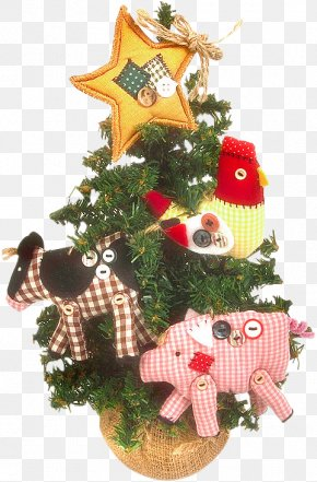 Christmas Tree Decoration - Picture Frames Ansichtkaart Photography New Year PNG