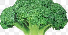 Broccoli - Broccoli Vegetable Rapini Food PNG