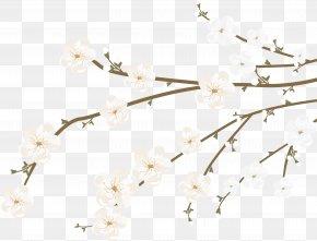 Sakura Decoration Vector - Cherry Blossom Euclidean Vector PNG