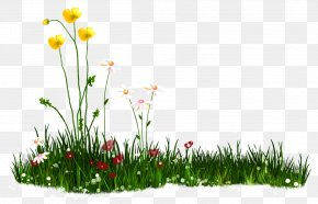 Nature - Android Download Clip Art PNG