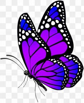 Butterfly Purple Clip Art Image - Butterfly Clip Art PNG