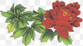 Flower - Cut Flowers Moutan Peony Floral Design PNG