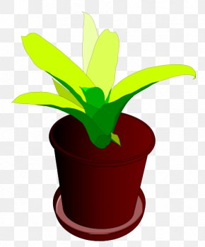 Beautiful Plant Cliparts - Houseplant Flowerpot Clip Art PNG