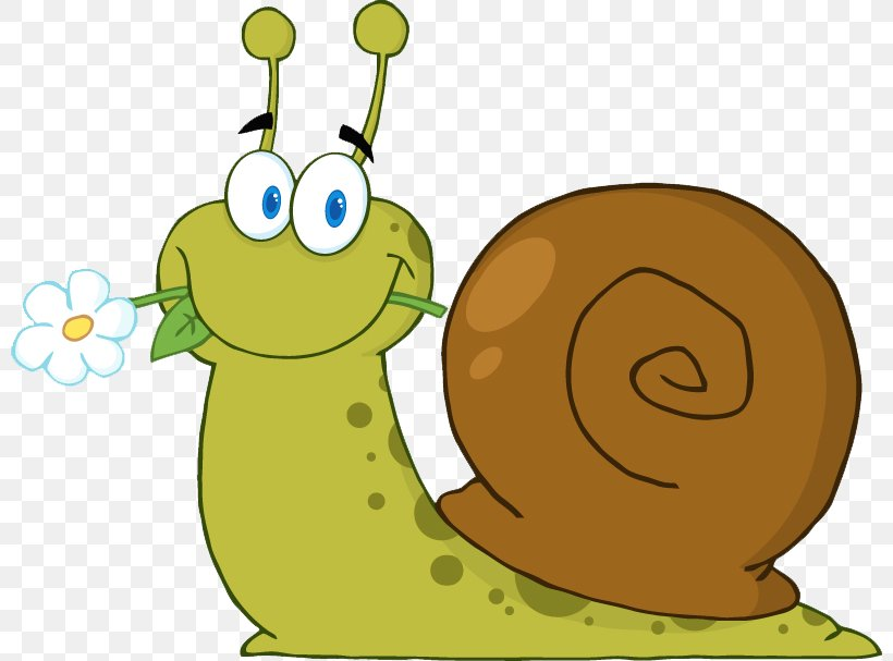 Snail Clip Art