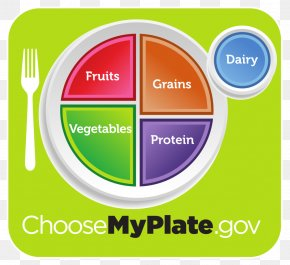 Obesity - MyPlate Diet Food Pyramid Nutrition Food Group PNG