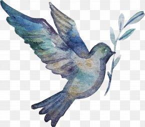 Vector Hand-painted Watercolor Bird - Communion PNG