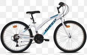 Fat Bike Camping - Mountain Bike Hybrid Bicycle Cyclo-cross Bicycle Cycling PNG