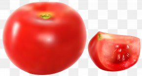 Tomatoes Free Clip Art Image - Plum Tomato Vegetable Clip Art PNG