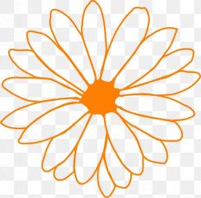 Orange Flower - Flower Drawing Common Daisy Clip Art PNG