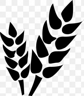 Agriculture Icon - Agriculture Farm Vector Graphics PNG