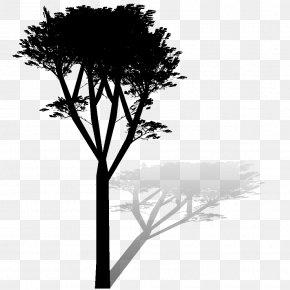 Twig Plant Stem Desktop Wallpaper Leaf Computer PNG