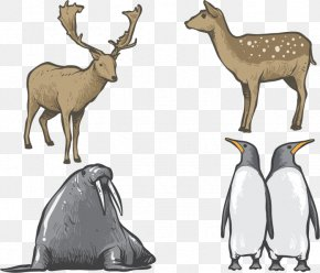 Hand-painted Animals PNG