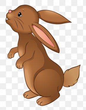 Greedy Rabbit - Easter Bunny Leporids European Rabbit Clip Art PNG