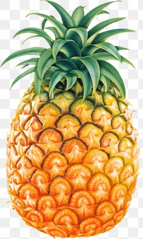 Pineapple Fruit Image - Pineapple Fruit Clip Art PNG