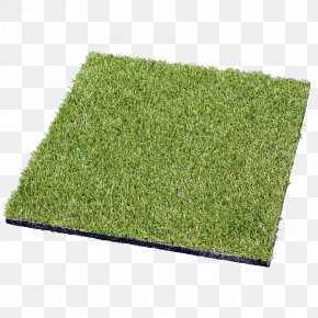 Turf - Lawn Artificial Turf Plant Shrub Rectangle PNG