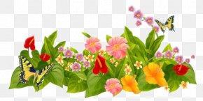 Flower - Flower Garden Parterre Lawn PNG