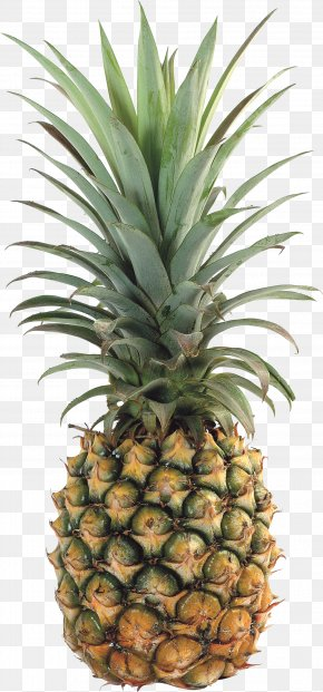 Pineapple Image, Free Download - Upside-down Cake Pineapple Tropical Fruit PNG