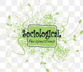 : Islamic - Sociology Sociological Perspectives Society Social Reality Point Of View PNG