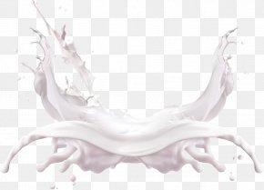 Milk Splash Image - Cow's Milk PNG