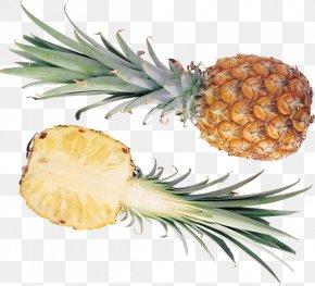 Pineapple - Pineapple Fruit Auglis Lemon Clip Art PNG