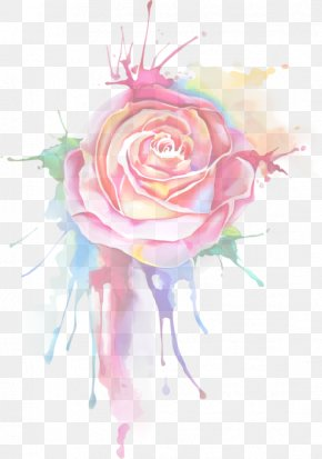 Painting - Garden Roses Floral Design Watercolor Painting Drawing PNG