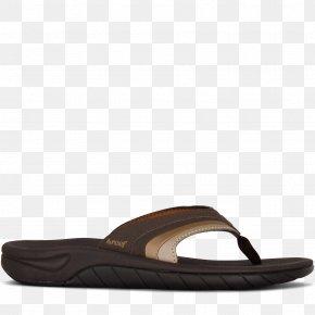Carnation Shoe Mesh Gold Sandal, PNG, 800x800px, Carnation
