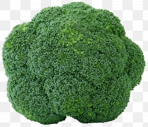 Broccoli - Broccoli Organic Food Indian Cuisine Vegetable Fruit PNG