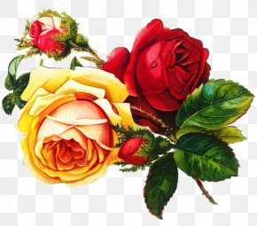 Camellia Flower Arranging - Background Family Day PNG