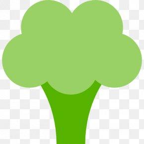 Broccoli - Broccoli Slaw Dietary Supplement Food Vegetable PNG