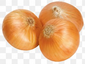Onion Image, Free Download Picture - White Onion Clip Art PNG